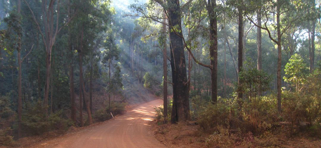 bike touring, Nanga, Munda Biddi Trail, Western Australia