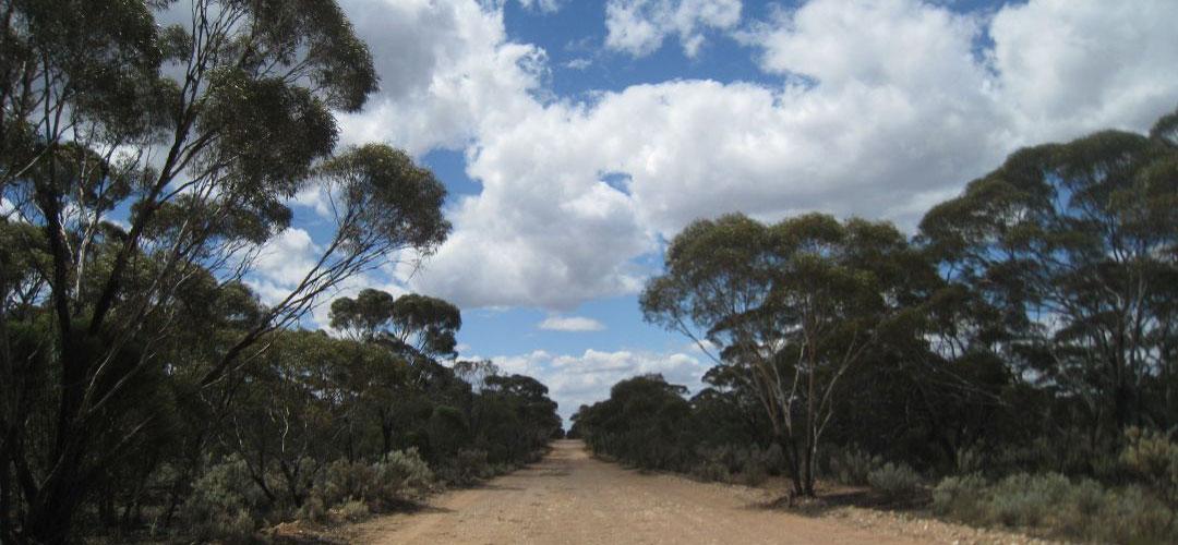bike touring, Parmango Road, south coast Western Australia