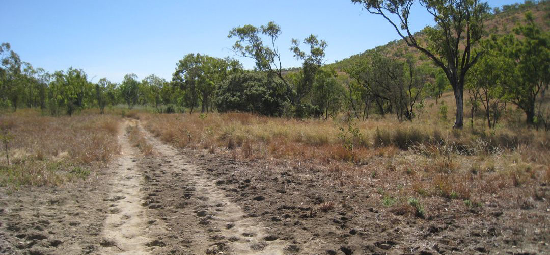 No great cycle trail, Fig Tree Yard, Gregory National Park, Northern Territory