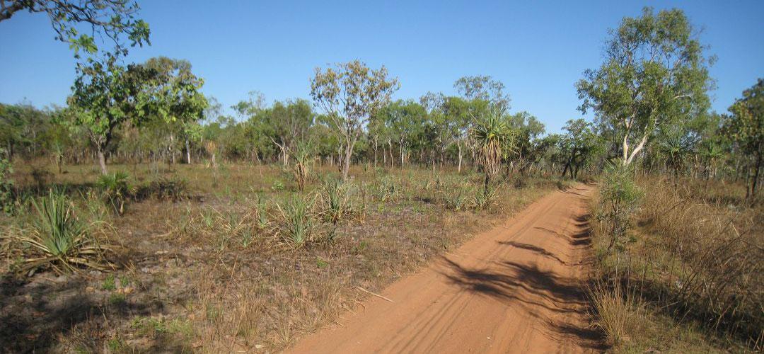 bicycle adventure, Sandy Billabong, Kakadu NP, Northern Territory