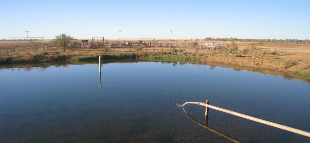finding water, Bunda bore, Buntine Highway, Northern Territory