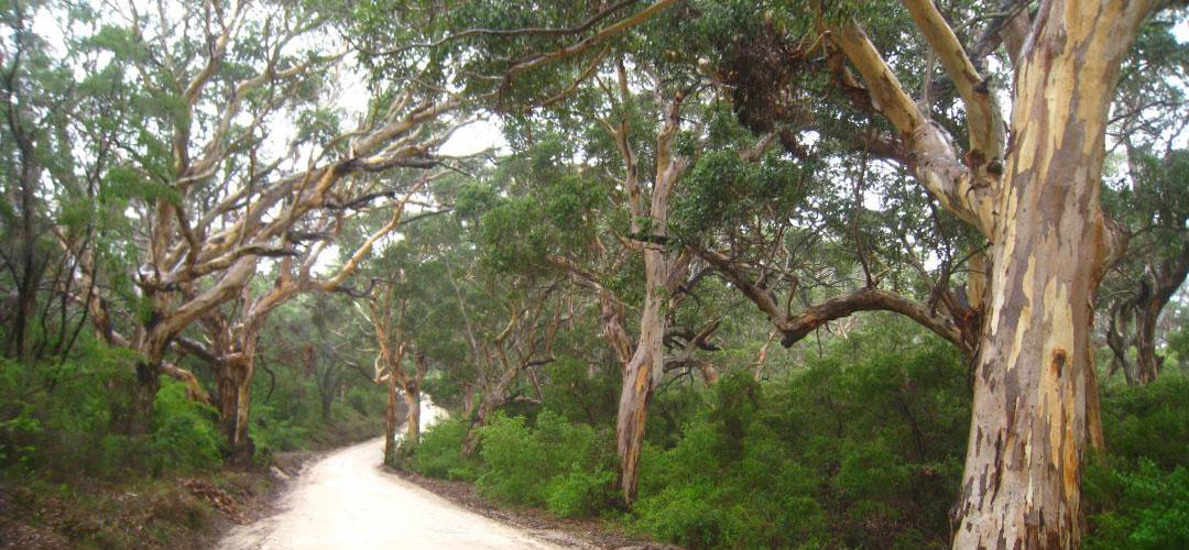 off road bike touring, Leeuwin Naturaliste National Park, Western Australia