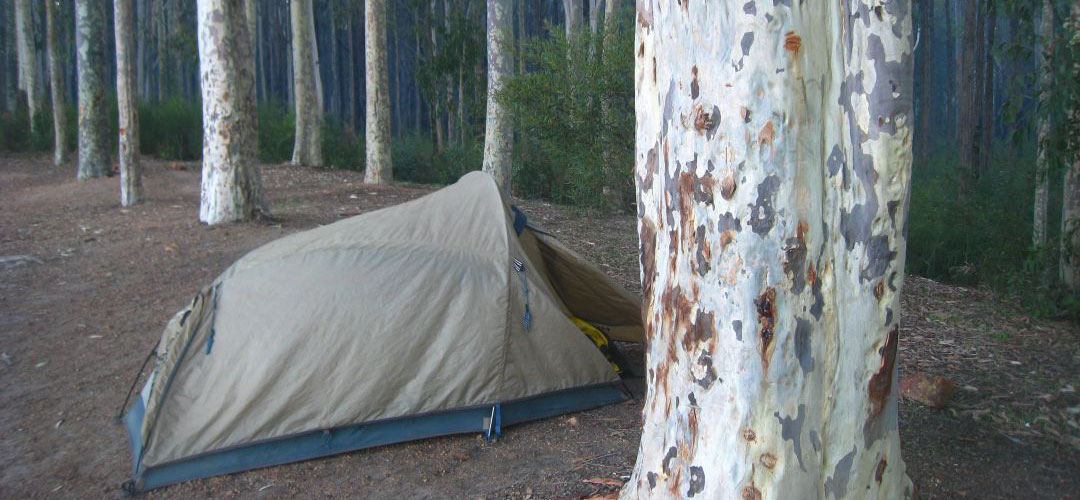 free camp, Marrinup camping area, Munda Biddi Trail, Western Australia